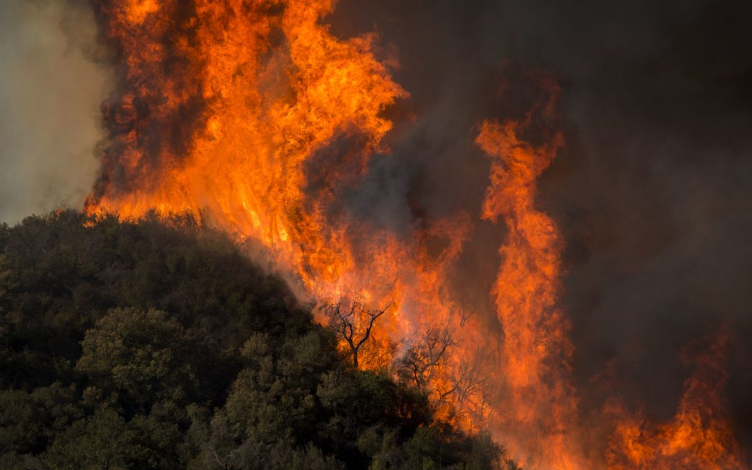 Tick Fire crews prepare for new Santa Ana Winds